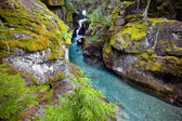 Avalanche Gorge — Stock Photo