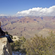 Stock Photo: Grand Canyon View