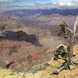 Grand Canyon View - Photo