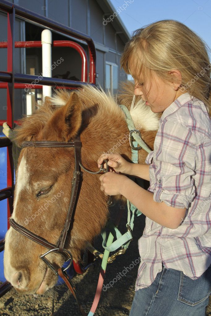 A young girl putting a bridle on her pony — Stock Photo #10522828