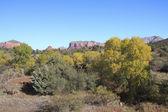 Vroege herfst sedona arizona — Stockfoto