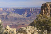 Grand canyon landskap — Stockfoto