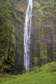 Waimoku Falls on Maui — Foto Stock