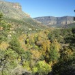 Stock Photo: Oak Creek Canyon in Fall