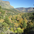 Oak Creek Canyon in Fall - Stock Photo