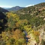 Oak Creek Canyon in Fall — Stock Photo #9302560