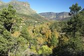 Oak Creek Canyon in Fall — Stock Photo