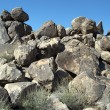 Stock Photo: Desert Boulder Landscape