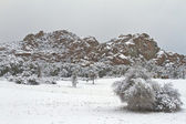 Wintery Arizona Landscape — Stock Photo