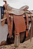 Horse With Western Saddle — Stock Photo