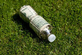 Plastic Bottle and Dollar — Stock Photo