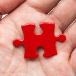 Red Puzzle — Stock Photo #8163784