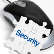 Web Security — Stock Photo