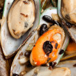 Mussel — Stock Photo #8949639