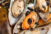 Mussel — Stock Photo