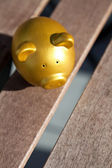 Gold Piggy Bank — Stock Photo