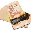 Canadian Dollar — Stock Photo #9091535