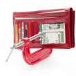 Red Wallet - Stock Photo
