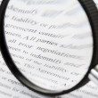 magnifying glass — Stock Photo #9208506