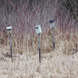 Man-made Birdhouse - Foto Stock