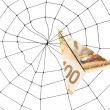 Stock Photo: Spider Web and dollar