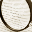 magnifying glass — Stock Photo #9497016