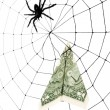 Spider Web and dollar — Stock Photo #9524596