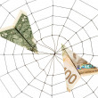 Spider Web and dollar — Stock Photo #9524618