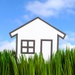 House and green grass — Stock Photo #9651317
