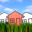 House and green grass — Stock Photo #9651333