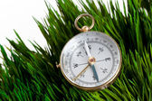 Compass and Green Grass — Stock Photo