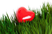 Red Heart and green grass — Stock Photo