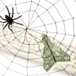 Spider Web and dollar — Stock Photo #9662535
