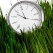 Stock Photo: Clock and green grass