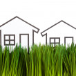 House and green grass — Stockfoto