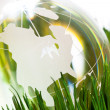 Globe and green grass — Stock Photo