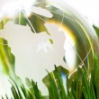 Globe and green grass — Stock Photo #9663273