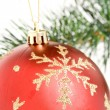 Christmas Ornament — Stock Photo #9734660