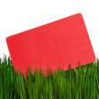 Business Card and green grass — Stock Photo #9734863