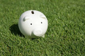 Piggy Bank and green grass — Stock Photo