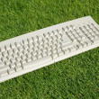 Computer Keyboard — Stock Photo