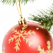 Christmas Ornament — Stock Photo #9752946