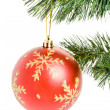 Christmas Ornament — Stock Photo #9786385