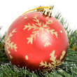 Christmas Ornament — Stock Photo #9786400
