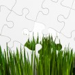 Green grass and Puzzle — Stock Photo