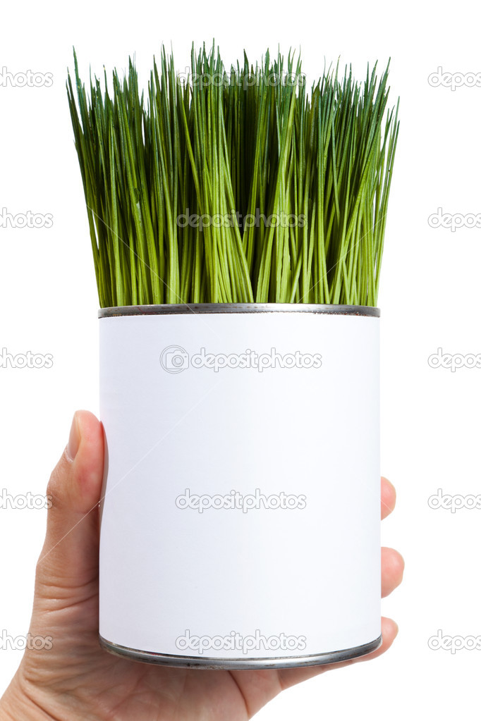 Green grass and metal can, concept of Environmental Conservation — Stock Photo #9786871