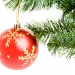 Christmas Ornament — Stock Photo #9801632