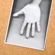 Stock Photo: Photocopy of hand on the Bulletin Board
