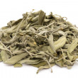 Dried Salvia - Stock Photo
