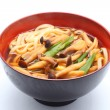 Japanese wheat noodle, Udon — Stock Photo
